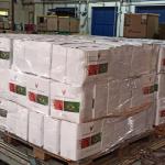 Correios transporta cestas básicas para Manaus